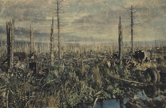 Sinyavino 1942
