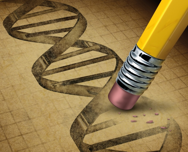 Nature|Comment: Don't edit the human germ line |  doi:10.1038/519410a