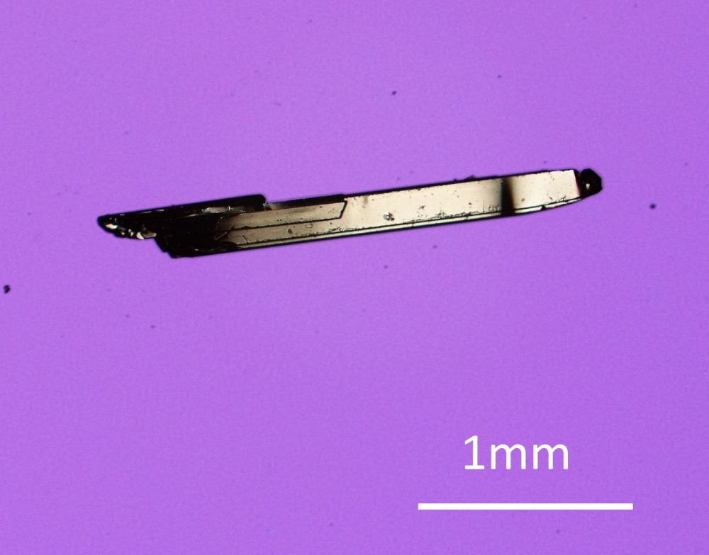 A crystal of tungsten ditelluride is shown. Image courtesy of Wudi Wang and N. Phuan Ong, Princeton University.