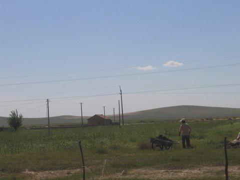 151211_inner_mongolian_millet_farmer_in_chifeng