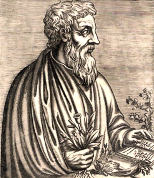 Διοσκουρίδης ο Πεδάνιος