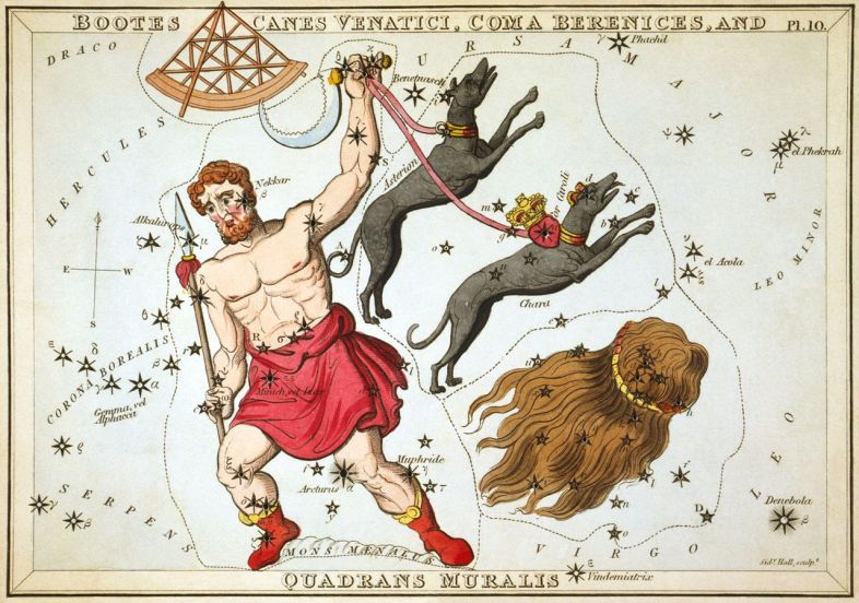 Boötes as depicted in Urania's Mirror, a set of constellation cards published in London c.1825. In his left hand he holds his hunting dogs, Canes Venatici. Below them is the constellation Coma Berenices. Above the head of Boötes is Quadrans Muralis, now obsolete, but which lives on as the name of the early January Quadrantid meteor shower. Mons Mænalus can be seen at his feet. wikipedia URL [https://en.wikipedia.org/wiki/Boötes]
