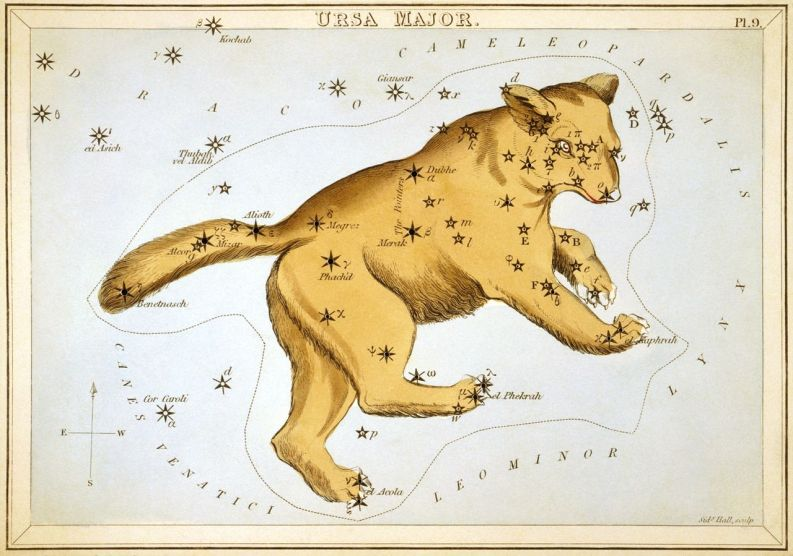Ursa Major as depicted in Urania's Mirror, a set of constellation cards published in London c.1825. wikipedia URL [https://en.wikipedia.org/wiki/Ursa_Major]