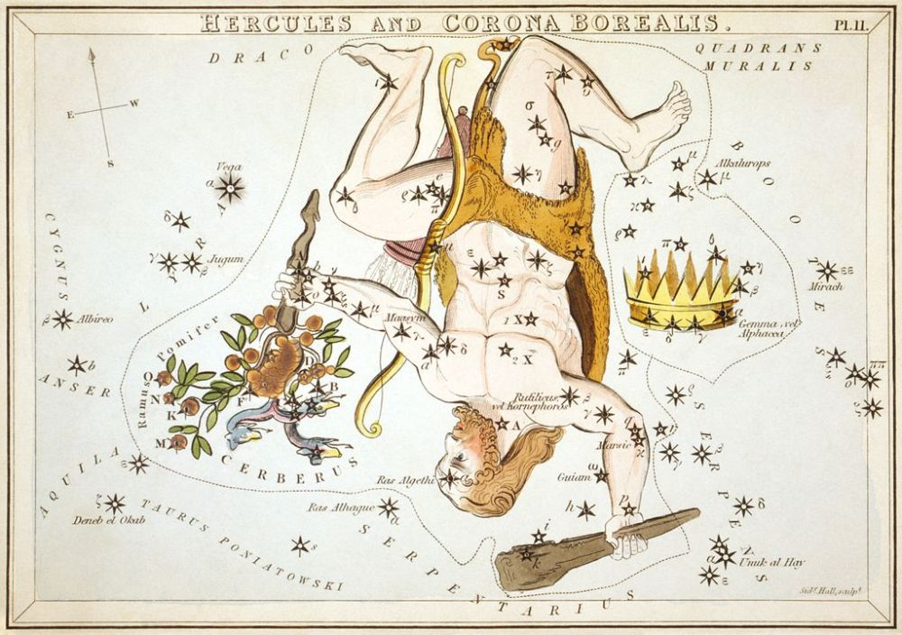 Hercules as depicted in Urania's Mirror, a set of constellation cards published in London c.1825. The figure appears upside down in the sky relative to neighbouring constellations Wikipedia URL [https://en.wikipedia.org/wiki/Hercules_(constellation)]