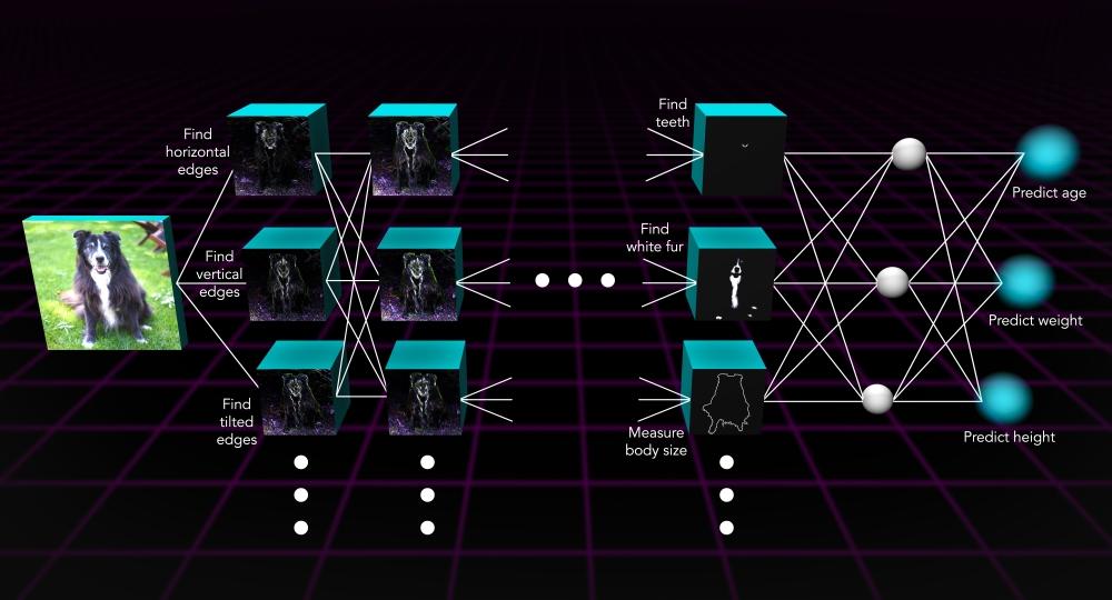 neural_network_visual_final.jpg